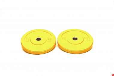 Colored Bumper Plate 25lbs